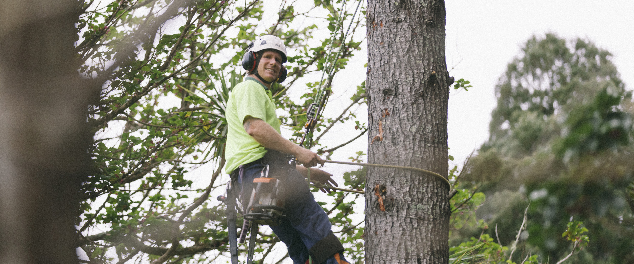 Eagle Eye Tree Services is owned and operated by fully qualified and experienced arborist, Matt Blainey