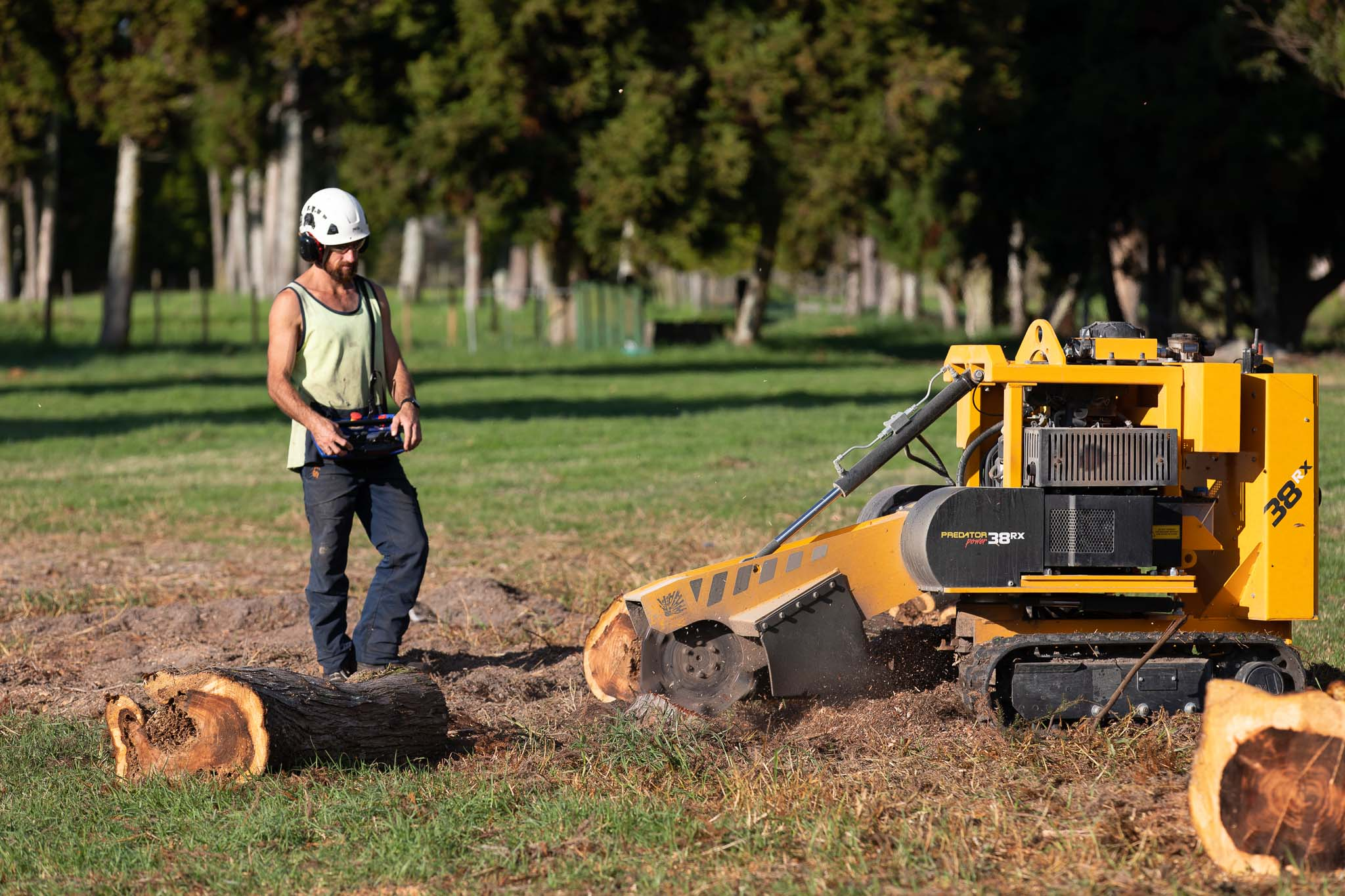 STUMP GRINDER-WEB-5839